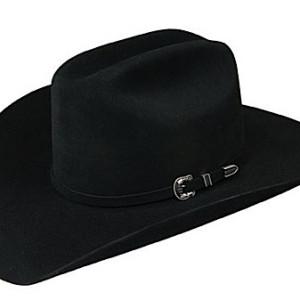 STETSON Skyline 4X Fur Felt Hat